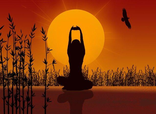 Testi per la Pratica Yoga