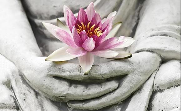 corsi yoga padova meditazione